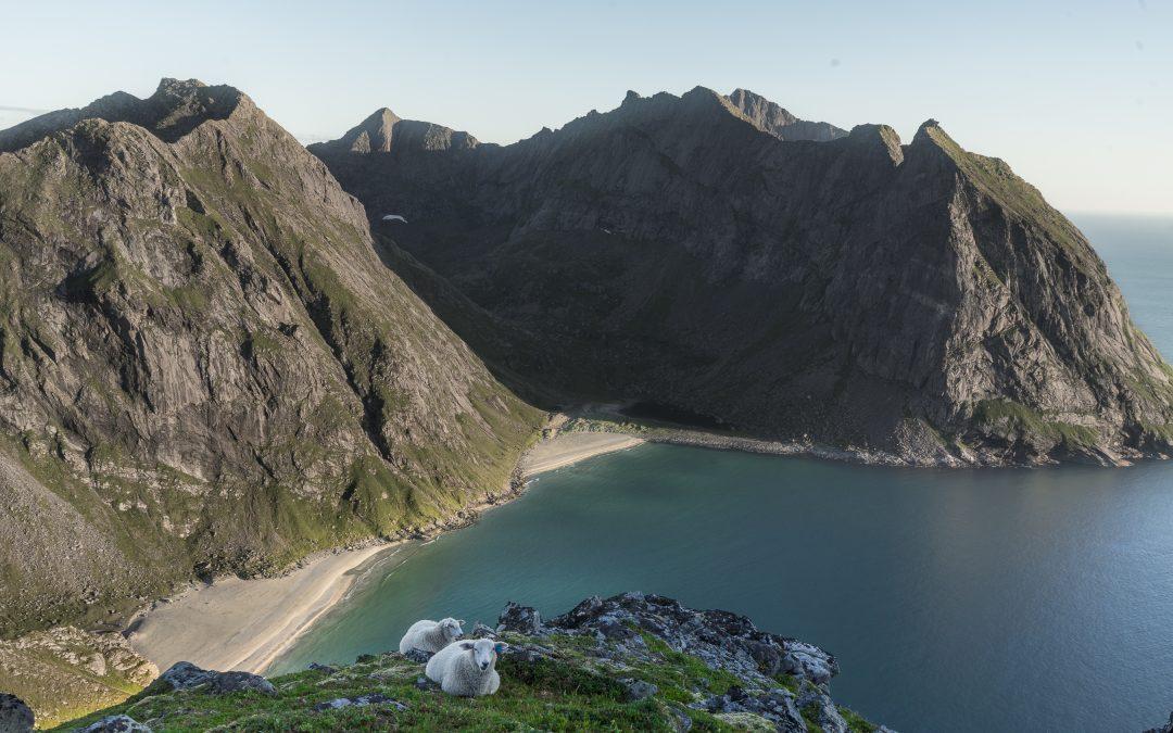 Chapter 7 – Kvalvika beach & Mt. Ryten